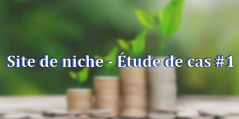 Sites de niche - etude de cas#1